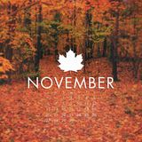 November Mixtape •2015•