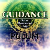 Solar Movement 009 - Guidance