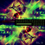 Unadulterated House Vol. 12