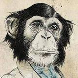 IVC039 Northern Monkey DJ Selection +  b2b Peacharoo 300317