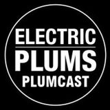 The Electric Plums Plumcast Series 2.  PC1 'House Trained' Phil Loraine
