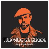 The Vibe Of Joey Negro Special