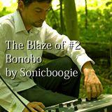 #2 Blaze of Bonobo