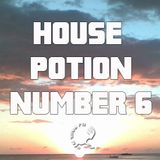 House Potion Number 6