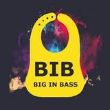 BIB - Big In Bass Mix - Oddball Savage - 2019