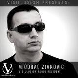 Miodrag Zivkovic aka Alienated Mike - Visillusion Radio Resident Timetraveler Mix (July 2019)