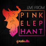 Live From Pink Elephant  (6/17/2013)