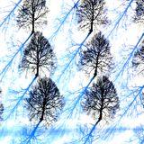 Endless Winter 2012