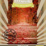 Alè Le Teknival - Issue #5 - 13 nov 2012