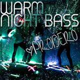 Prodero - Warm Night Bass - Deep Tech House Mix