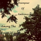 E.T.C.H. - Downpour Of Ambience 10: Among The Forest Of Gold - Ambient Podcast 010