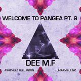 Dee MF - July 2015 Asheville Full Moon Gathering