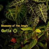 Mudra podcast / Gutta - Blossoms of The Jungle [MM71]