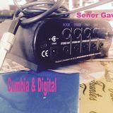 Señor Gaviria - Cumbia & Digital