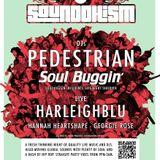 Sounddhism podcast #2 - Soul Buggin'