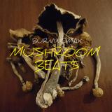 Burningmax :: Mushroom Beats