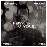 POLYPHONE - New Year, Oh Yeah ! (Promo-Mix Jan. 2015)