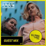 """Jungelen Guest Mix #1: DJ Pika """"Terra"""" (NO)"""