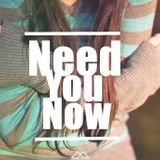 Lady Antebellum - Need You Now [Levi Hetfield Remix]