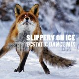 2016-03-11 ::: Mouvement Libre - Slippery on Ice