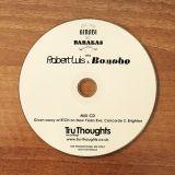 Robert Luis & Bonobo DJ Mix from 2005