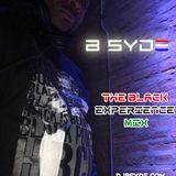 Black Experience Mix (Explicit)