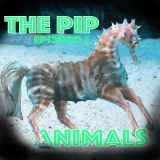 The PIP on Bondi Beach Radio Ep.3 - How Well Do You Know Your Animals?