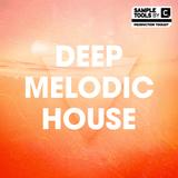 "Deep Melodic House Mix ""Live""014"