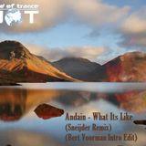 Andain - What its Like (Sneijder Remix) (Bert Voorman Intro Edit)