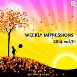 Weekly Impressions 2014 vol.7