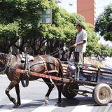 Convenio de Recuperadores Urbanos en Godoy Cruz: Natalia Camisay de la Fundación APCM