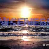 Niceness Vol 1