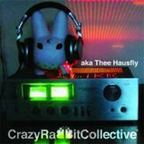 aka thee hausfly - live at CrazyRabbitCollective 2010