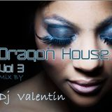 Dragon House Mix 3