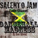 """DANCEHALL MADNESS-""""Summer Time Party""""-Dj One Blood(23/11/2011)"""