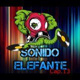 SONIDO ELEFANTE CAP.13