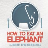 How To Eat An Elephant   Palm Sunday 2016