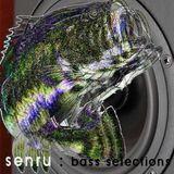 senru live set @Bassline November 17 2013