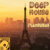 Deephouse Pleasures ♫ 4GROOVE #019
