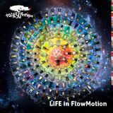 LIVE@FLOW IN MOTION#FORESTRONIKA FESTIVAL#Aug10/2014