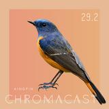 Chromacast 29.2 - Kingpin