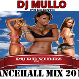 PURE VIBEZ vol. 1  DanceHall Mix 2014  By  DJ MULLO