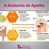 Oficina de Psicologia - Dr.ª Cristiana Santos - Anatomia do apetite