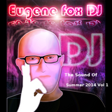 The Sound Of Summer 2014 Vol 1