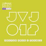 JVJ 012 (Exclusive Unlocked)