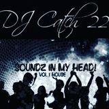 Soundz In My Head by Dj Catch22 VOL.1 House Mix