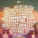Post-Roskilde (2016) / Shoot #2 (2017)