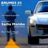 BRUMES#3 : Sacha Mambo & Beef n' Weasel - 03/01/2017 - RADIODY10.COM
