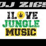 DJ ZIGY PODCAST 74 - I LOVE JUNGLE MUSIC
