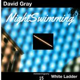 Nightswimming 15 - David Gray - White Ladder